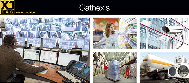 Cathexis case study header
